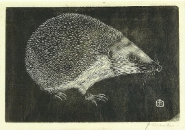 Egel, Jan Mankes