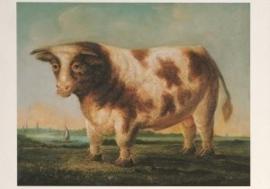 Stier met silhouet van Zutphen, anoniem