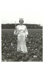 Landbouwprinses