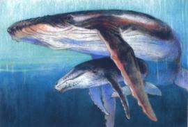 Walvis met jong, Loes Botman