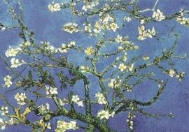 Amandelbloesem, Vincent van Gogh