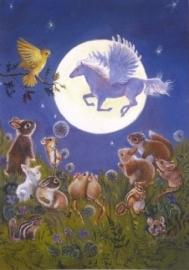 Kijken naar de maan, Judy Mastrangelo