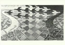Dag en nacht, M.C. Escher