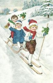 Kinderen op ski en slee