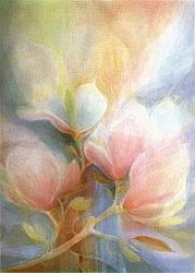 Magnolia, Janet Jordan