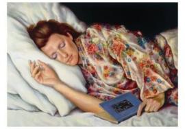 In slaap gevallen, Ch. F. Zeiler