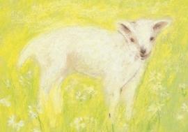 Lammetje, Marjan van Zeyl