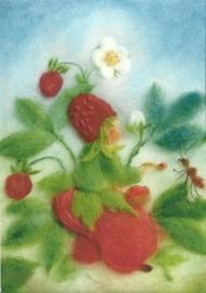Aardbeien, Franziska Sertori- Kopp