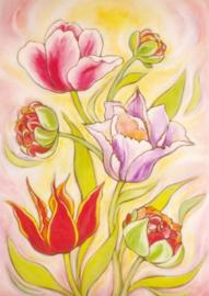 Tulpen, Geertje van der Zijpp