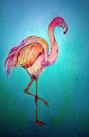 Flamingo, Brechtje Duijzer