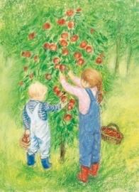Appels plukken, Marjan van Zeyl