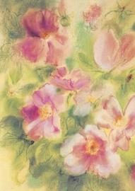 Wilde rozen, Marjan van Zeyl, groot formaat