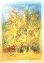 Herfstbomen, oktober, David Newbatt