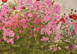 Roze phloxen en klaprozen met vlinder, Linda Benton