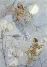 Feeën serenade, M.W. Tarrant