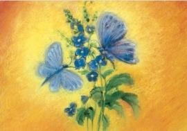 Blauwe vlinders, Marjan van Zeyl