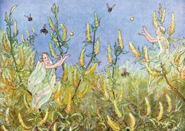 Weide-elfen, M. Minckwitz
