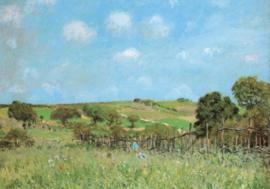 Weide, Alfred Sisley