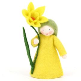 Narcis met bloem in de hand