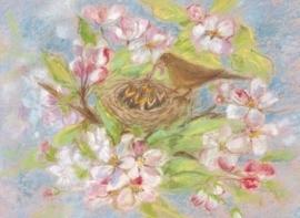 Merelnest in appelbloesem, Marjan van Zeyl