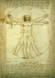 Studie van het menselijk lichaam, Leonardo da Vinci