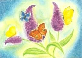 Augustus, vlindervlucht, maandkaart Heike Stinner