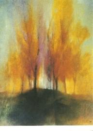 Herfstbomen, J.D. Habegger