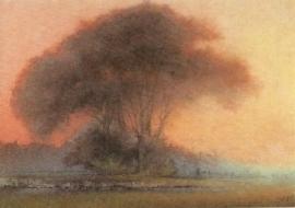 Bomen in avondlicht, Hans Geissberger