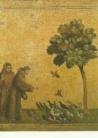 Franciscus predikt tot de vogels, Giotto