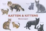 Katten & kittens / M George