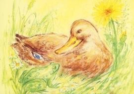 Eend en kikker, Marjan van Zeyl