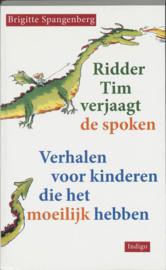 Ridder Tim verjaagt de spoken / Brigitte Spangenberg