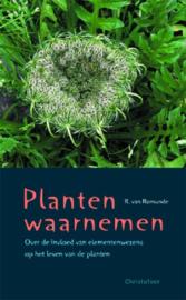 Planten waarnemen / R. van Romunde