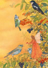 Elf met vogels, Daniela Drescher