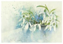 Sneeuwklokjes, Kerstin Prewo