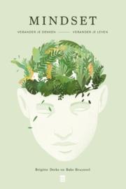 Mindset verander je leven, verander je denken / Brigitte Derks