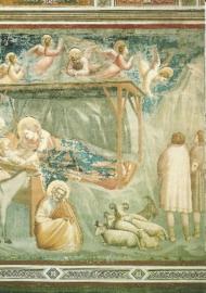 Geboorte, Giotto