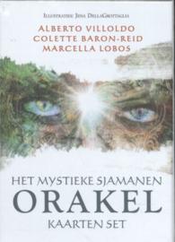 Het mystieke sjamanen orakel, Colette Baron-Reid