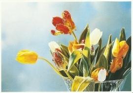 Bos tulpen, Tjalf Sparnaay