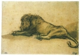 Liggende leeuw, Rembrandt