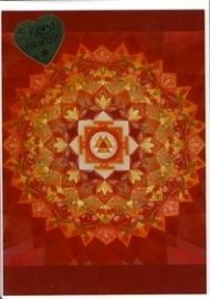 Nacht van Licht, Pieter Weltevrede, 5 dubbele kaarten met envelop