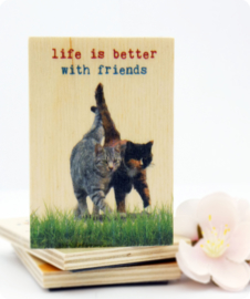 Houten magneet Life is better with friends