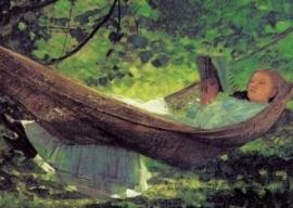 Zonlicht en schaduw, Winslow Homer