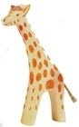 Giraffe Groot Rennend