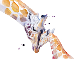 Giraf met jong, Veerle