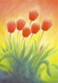 Tulpen, Erika Hoffmann