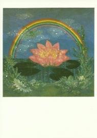 Regenboog en lotusbloem, Diana Khan