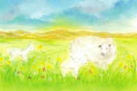 Het schaap, Baukje Exler