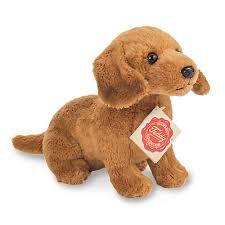 Kleine bruine hond