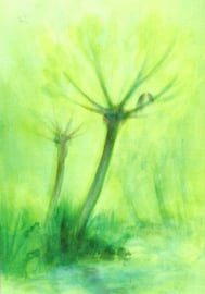 Lenteboom, David Newbatt